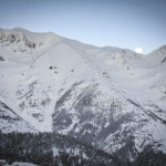 Photoauron3
