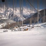 Photoauron6